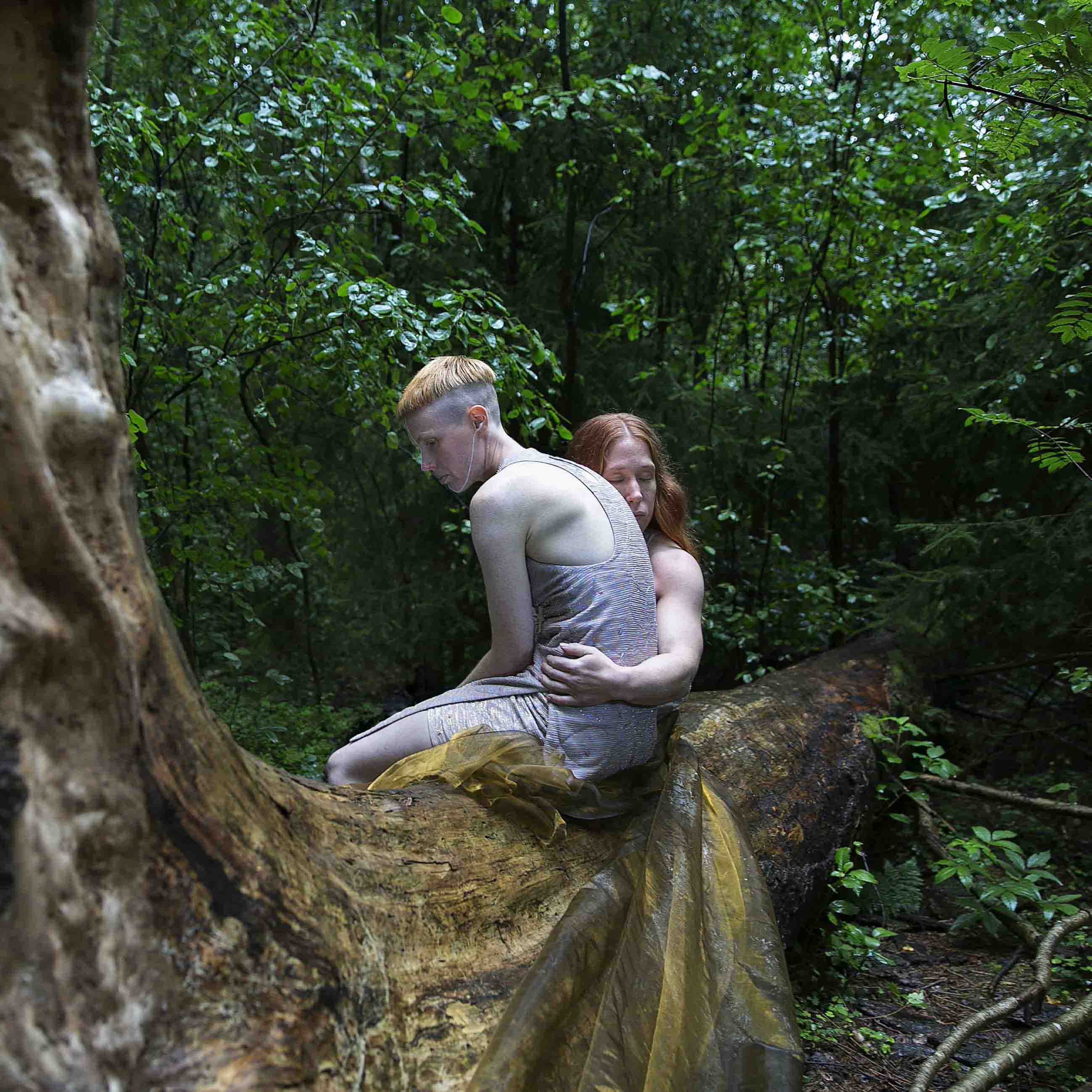 Image for the performance Hannah Felicia. The image depicts the dancers sitting on a tree that's toppled over, stretching into the picture. On the tree is a golden piece of cloth. Hannah sits in profile towards the left, behind her Felicia sits holding her arm around Hannah. Photo: Anna Ósk Erlingsdóttir